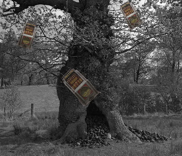 Sarah Rhys - Coal Tree Slotmachine